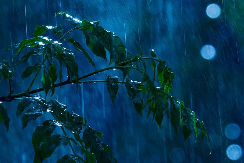 view-rain